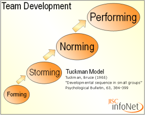 tuckman-model-pic